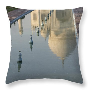 In Water Throw Pillow