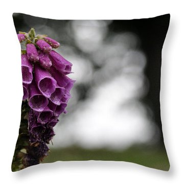 Throw Pillow featuring the photograph In Yorkshire 3 by Dubi Roman