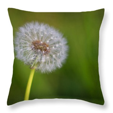 In Your Own Time Throw Pillow