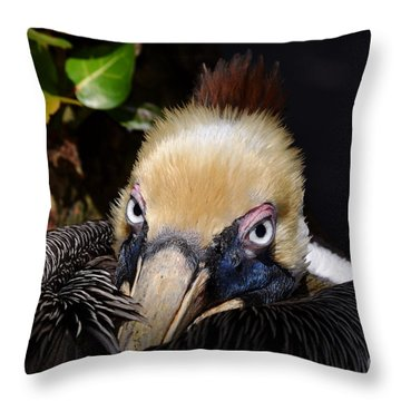In Your Watch Throw Pillow