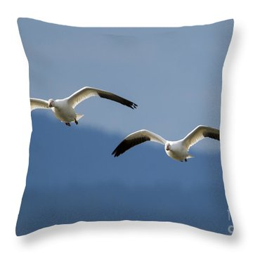 Inbound Throw Pillow