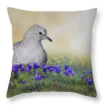 Inca Dove  Throw Pillow by Bonnie Barry