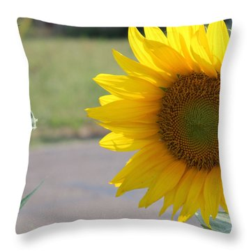 Incoming Bee Throw Pillow