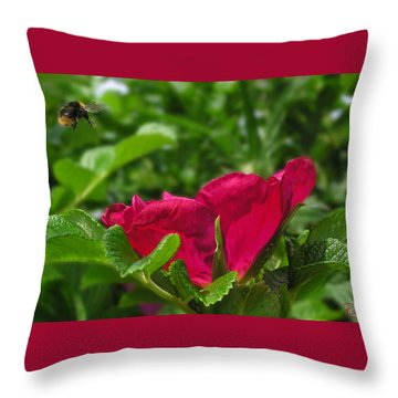 Incoming Rose Throw Pillow