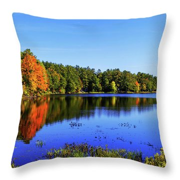 Throw Pillow featuring the photograph Incredible by Chad Dutson