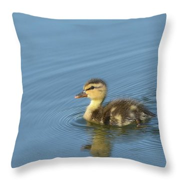 Independence Throw Pillow by Fraida Gutovich