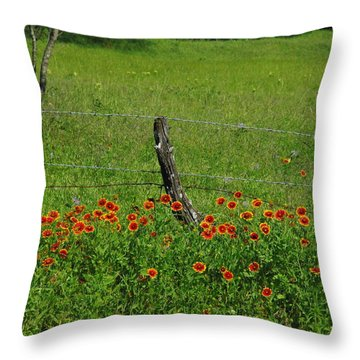 Indian Blanket Fence Throw Pillow by Robyn Stacey