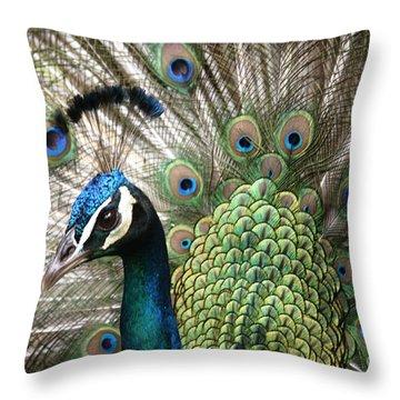 Indian Blue Peacock Puohokamoa Throw Pillow by Sharon Mau