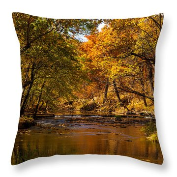 Indian Creek In Fall Color Throw Pillow