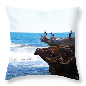 Indian Ocean Birds Resting On Rocks Throw Pillow