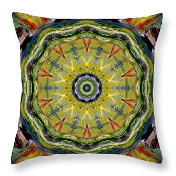 Indian Paint Throw Pillow
