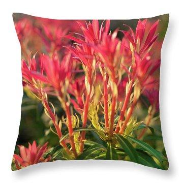 Wildflower Delight Throw Pillow