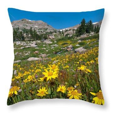 Indian Peaks Summer Wildflowers Throw Pillow