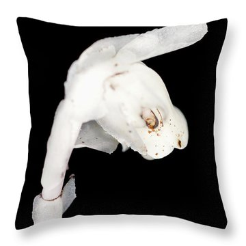 Throw Pillow featuring the photograph Indian Pipe Head by Meta Gatschenberger