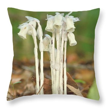 Indian Pipes Throw Pillow