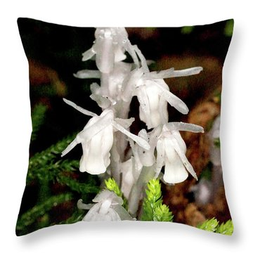 Indian Pipes On Club Moss Throw Pillow by Meta Gatschenberger