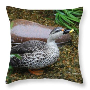 Indian Spot-billed Duck Throw Pillow