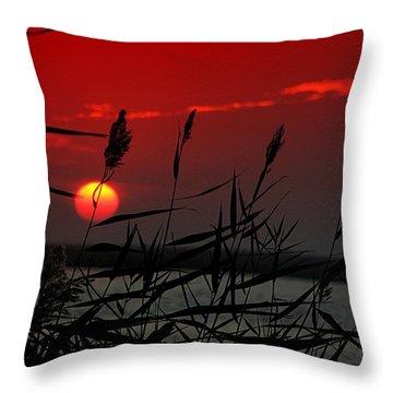 Indian Summer Throw Pillow by Allen Beilschmidt