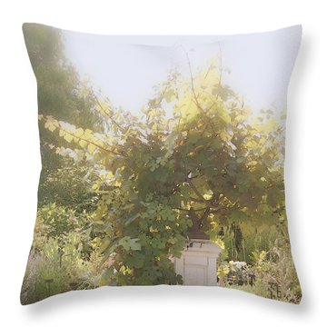 Throw Pillow featuring the photograph Indian Summer Garden  by Margie Avellino
