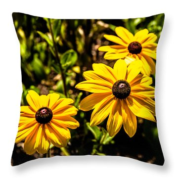 Indian Summer Gloriosa Daisy Throw Pillow
