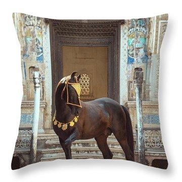 Indian Treasure Throw Pillow