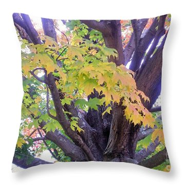 Indian Tree Throw Pillow