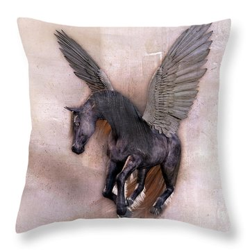 Indian Wind Song Throw Pillow