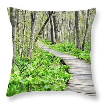 Indiana Dunes Great Green Marsh Boardwalk Throw Pillow