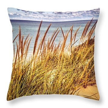 Indiana Dunes National Lakeshore Throw Pillow