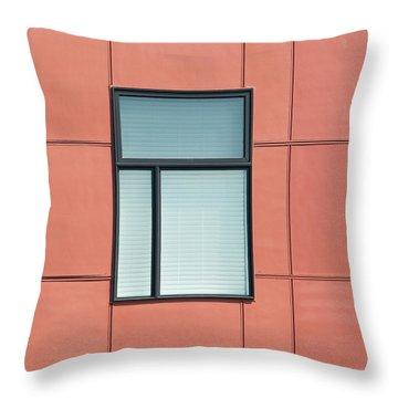 Indiana Windows 5 Throw Pillow
