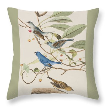 Indigo Bird Throw Pillow by John James Audubon