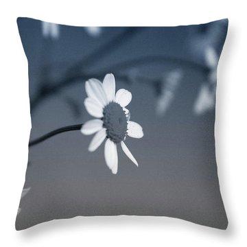 Indigo Daisies 1- Art By Linda Woods Throw Pillow