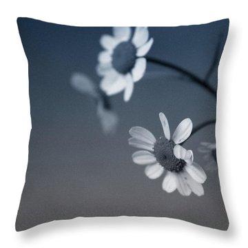 Indigo Daisies 2- Art By Linda Woods Throw Pillow