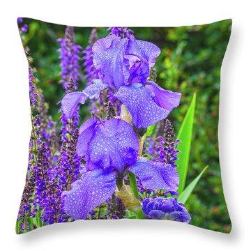 Indigo In Nature  Throw Pillow by Bijan Pirnia