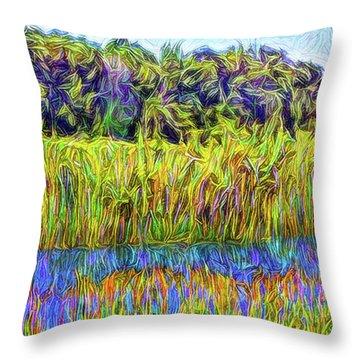 Indigo Lake Reflections Throw Pillow by Joel Bruce Wallach