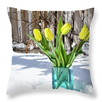 Throw Pillow featuring the photograph Indoors Out by Traci Cottingham