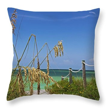 Throw Pillow featuring the photograph Indulging In Memories by Michiale Schneider