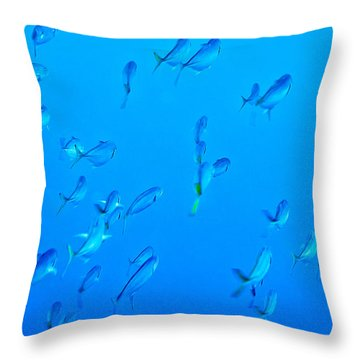 Throw Pillow featuring the photograph Infinite Blue by Perla Copernik