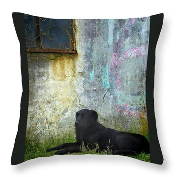 Ingapirca Incan Ruins 41 Throw Pillow