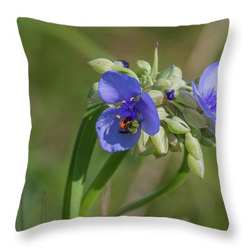 Inl-12 Throw Pillow
