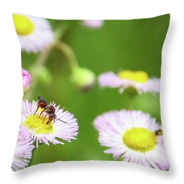 Inl-2 Throw Pillow