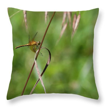 Inl-4 Throw Pillow