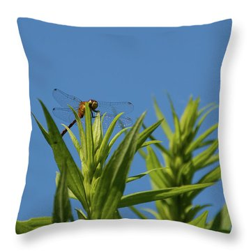 Inl-6 Throw Pillow