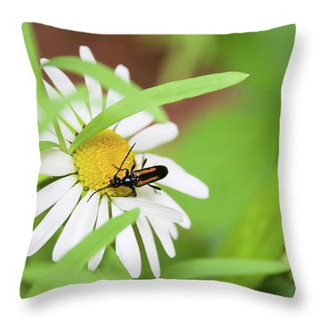Inl-8 Throw Pillow