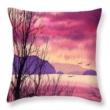 Throw Pillow featuring the painting Inland Sea Islands by James Williamson