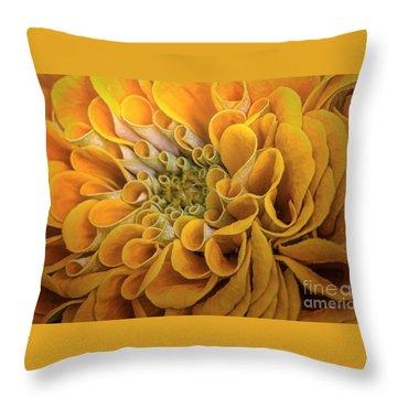 Inner Beauty Throw Pillow by Mary Lou Chmura