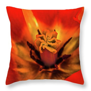 Throw Pillow featuring the photograph Inner Floral Macro Abstract by Julie Palencia