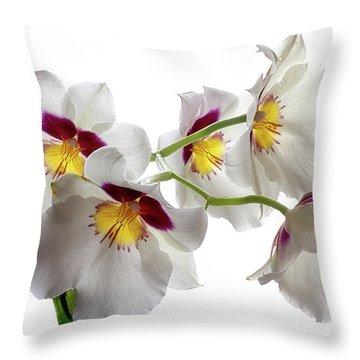 Inner Glow 1 Throw Pillow