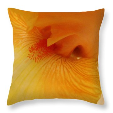 Throw Pillow featuring the digital art Inner Iris, Yellow, Close-up by Jana Russon