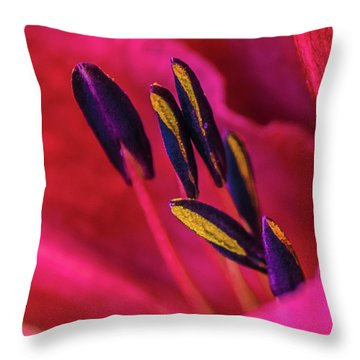 Throw Pillow featuring the photograph Inner Lily Macro Two by Julie Palencia